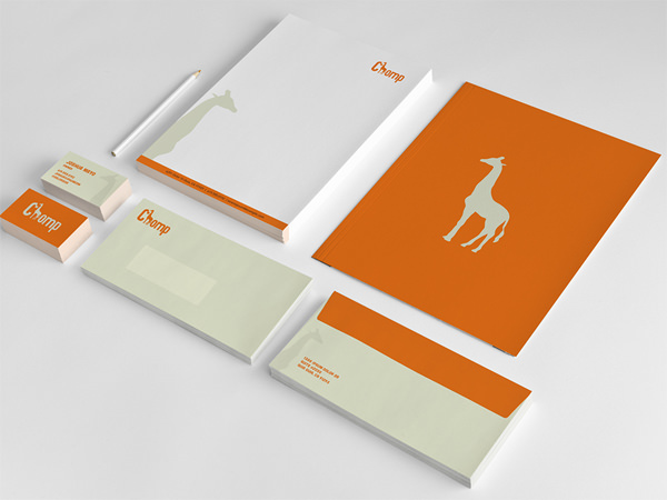 Free Professional Stationary Design For Graphic Designers 2014